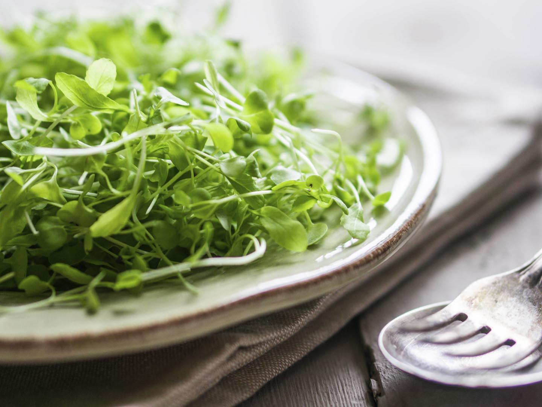 Apakah Pertanian Microgreens?