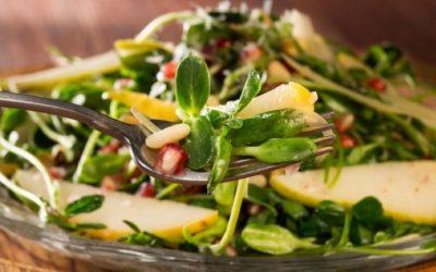 Manfaat Kangkung Microgreens Yang Tidak Kita Ketahui