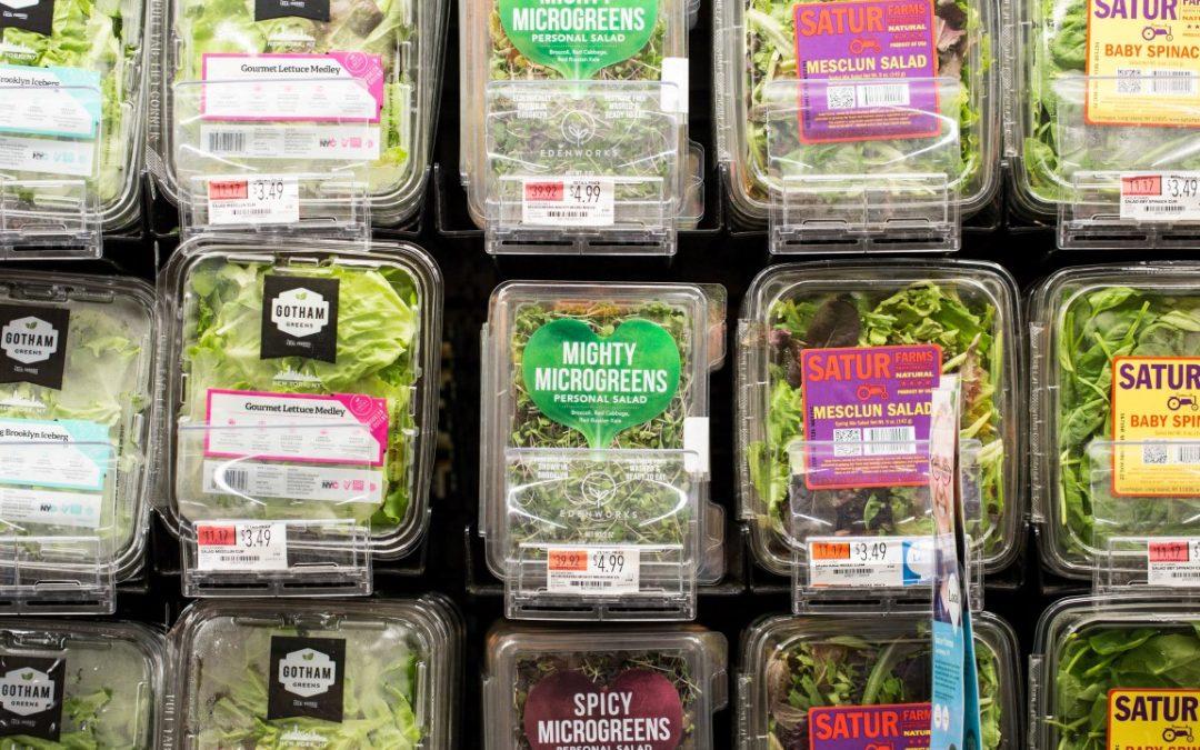 Pemasok Supplier Fresh Microgreens Jakarta Indonesia