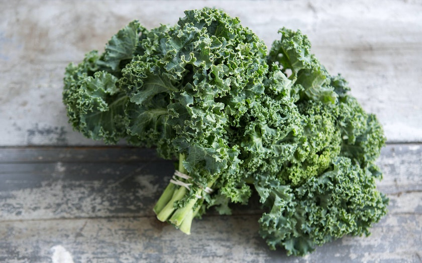 Manfaat Kale dan Tempat Jual Sayur Kale Organik